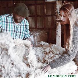 Le Mouton Vert wool2.jpg