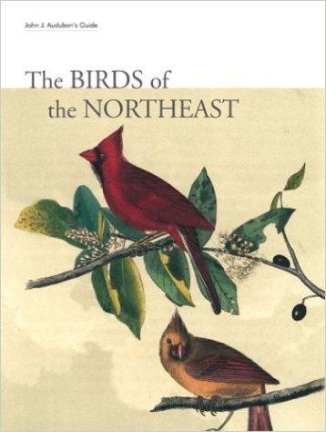 John J. Audubon's Guide: The Birds of the Northeast Hardcover –  2003