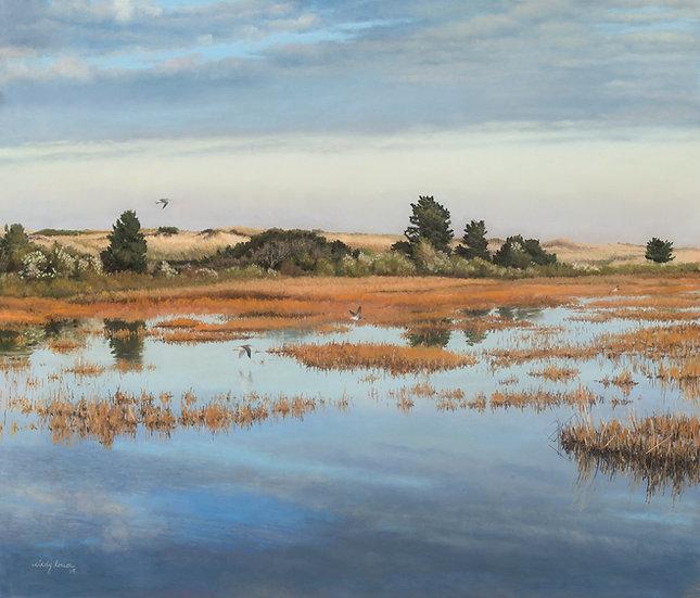 Yellowlegs Over Fall Marsh