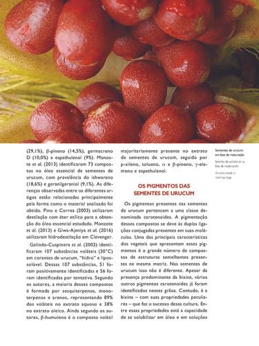 Sementes de urucum em fase de maturação - Acervo particular do autor