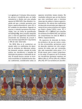 Balões volumétricos utilizados par a análise de pigmentos de sementes de urucum - Acervo particular do autor