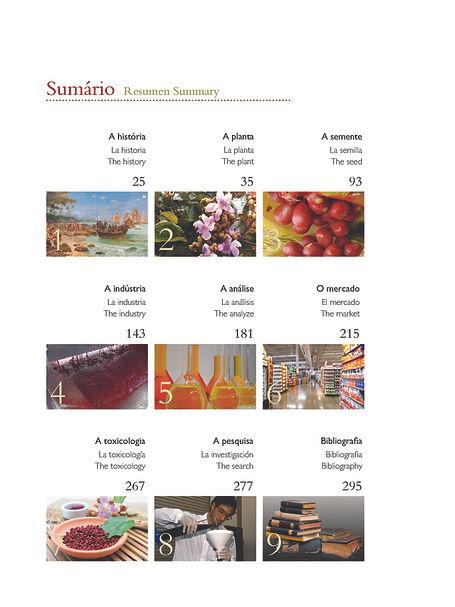 Urucum visualização 4_Página_08.jpg