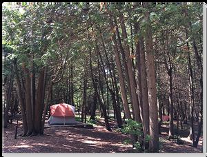 大家都來露營摟