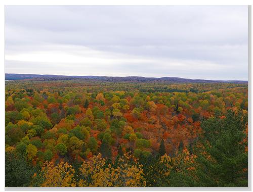 Lookout從各角度都可以看到漂亮的楓景