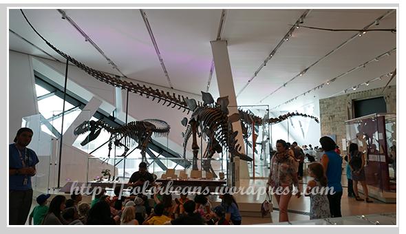 小朋友最愛的恐龍館