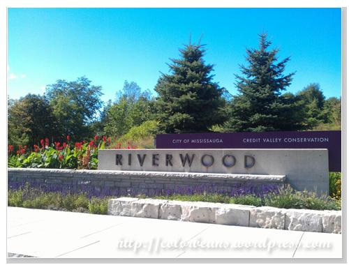 Riverwood Conservation