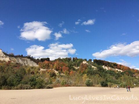 Bluffer's Park Beach後方就是懸崖