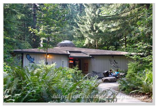 進入Lynn Canyon Park 後第一棟建築是Ecology Center