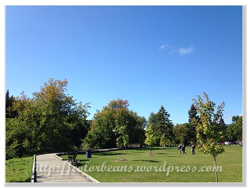 漂亮的Bissell Park