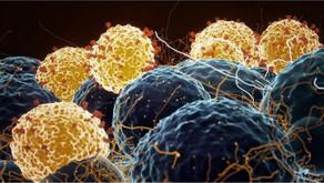 新冠疫苗:「一針還是兩針」等重要問題背後的科學