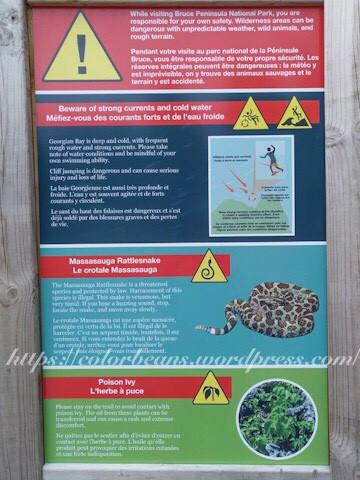 注意,有蛇和有毒的植物ㄛ