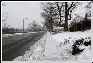 Niagara-Falls River Road 沿岸景色