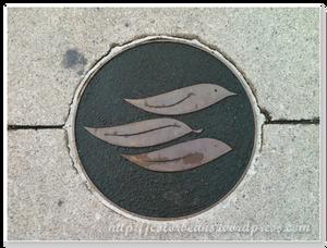 在Port Credit 地上的圖案,分別是鳥、樹葉和魚