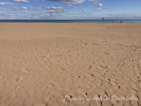 很乾淨的Bluff's Park Beach