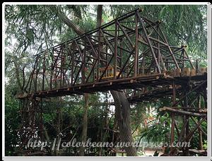 在樹叢間的火車軌道
