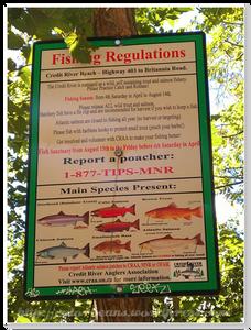 想釣魚,一定要遵守當地法律唷!