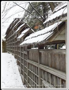 Kariya Park的圍牆也留下前幾天下凍雨的冰柱~