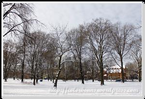 被雪覆蓋的Queen's Park