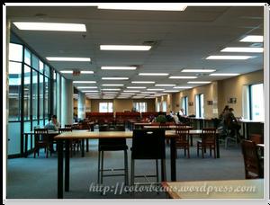 Mississauga-Library四樓閱覽室