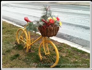 Port Credit 不知道是報廢的腳踏車還是為了裝飾而犧牲的