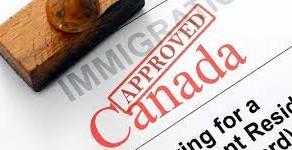 加拿大就业率最高的是哪所大学?