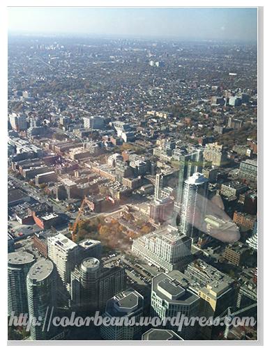 Toronto Downtown的景色