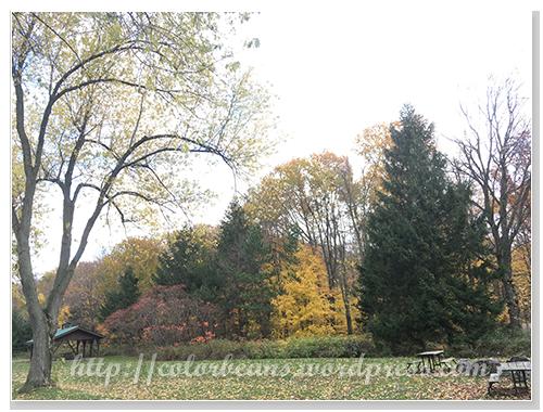 今天公園內比山邊風景漂亮XD