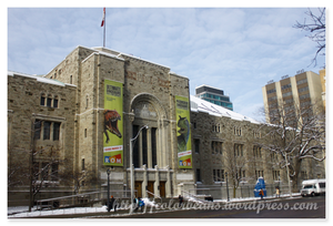 Royal Ontario Museum 面對Queen Park的ROM舊建築
