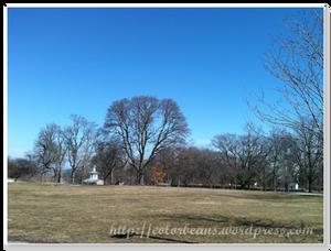 公園內的大草皮,超舒服