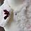 Thumbnail: Petite cape