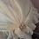 Thumbnail: Modestie en mousseline légère