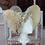 Thumbnail: Bonnet Empire collection Sophie Germain