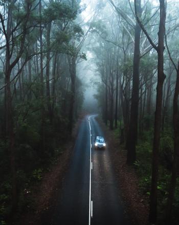 Springbrook Car Moody Road 4x5 B.jpg