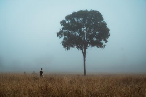 Me in field w tree.jpg