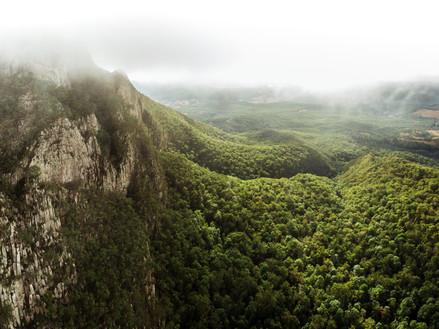 Mt Maroon valley drone.jpg