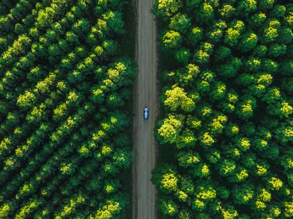 Car Johnston Rd drone Glasshouse Mtns.jp