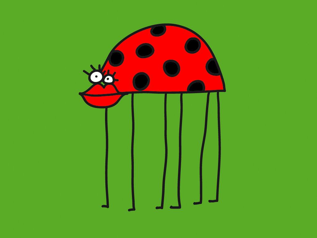 funny lady bug