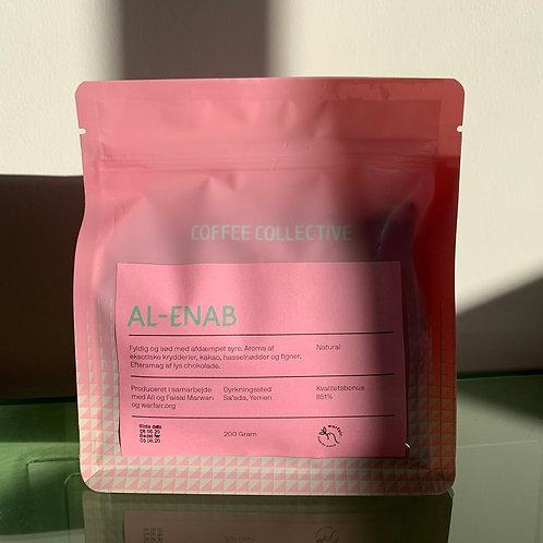 AL-ENAB Filter