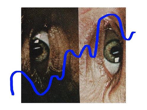 BLUE #2 | Filter (225g)