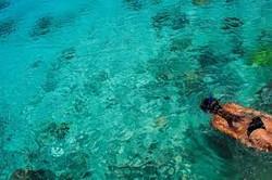snorkel off a catamaran