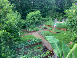 raised bed gardens jenkins