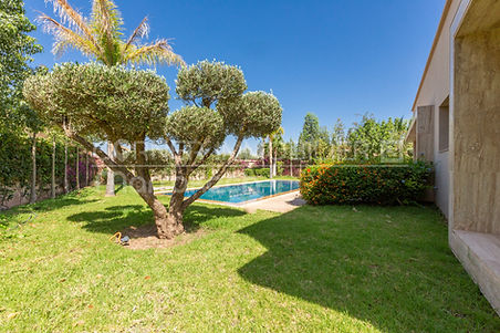 Propriété titrée, située en campagne à quelques kilomètres de Marrakech, sans AVNA. La propriété doit être achetée par des Marocains.  C'est véritablement une belle villa aux allures modernes avec de larges baies vitrées et de beaux espaces de vie.  3 chambres avec salles de douche, hammam, piscine, mur de clôture, forage de 100 ml. Terrain végétalisé de 1000 m².  Cette villa a beaucoup d'atouts.