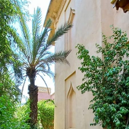 Au calme absolu, magnifique demeure dont l'architecture nous fait penser à un petit palais. le corps de la bâtisse de 700 m2 et comprenant 5 chambres et 5 salles de bains, son terrain paysager d'environ 1200 m2 avec une belle piscine est au cœur d'Amelkis Golf de Marrakech.   Cette maison à vendre, imposante avec ses 700 m² à rénover nous invite à imaginer une nouvelle décoration. Disposées autour d'une cage d'escalier prestigieuse, les vastes pièces se repartissent en salons, chambres avec cheminée, salle de bains, etc. Les volumes sont généreux.  Cette propriété a un très bon potentiel.