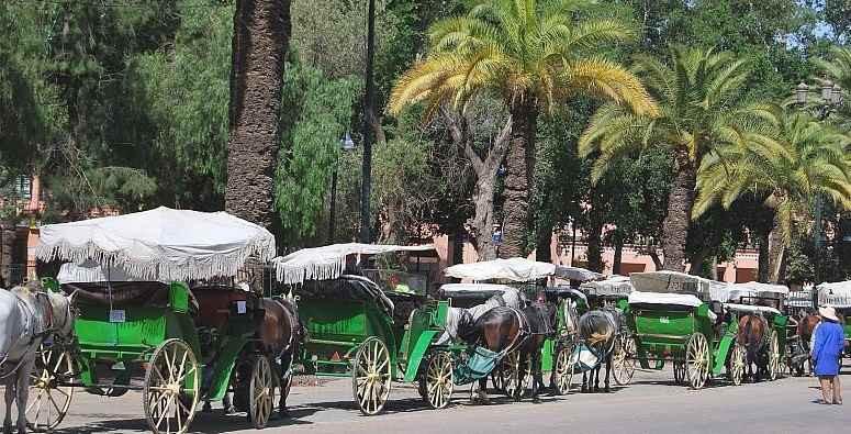 Partir en vacances à Marrakech dans une villa en location : Que faire ?