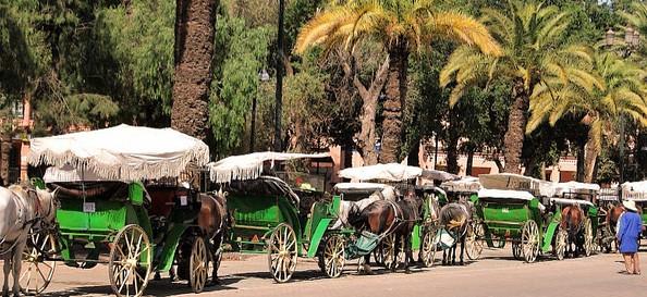 Location_voiture_marrakech