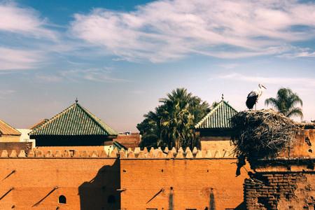 Visiting Marrakesh