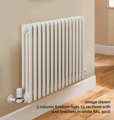 Ancona 3 Column 1800 x 609 (2665 BTU's) 13 Sections with Wall Brackets