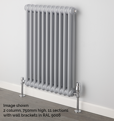 Ancona 2 Column 847 x 249 (885 BTU's) 5 Sections with Welded Feet