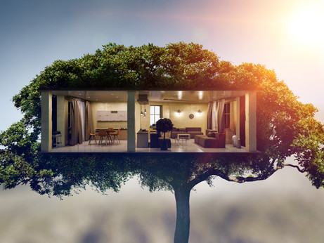 Helping Construction Become Environmentally Sustainable