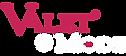 VDM-Logo-Light_N.png